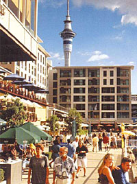 auckland city harbourside